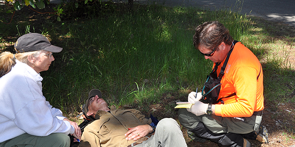 Search and Rescue team members responding to an injured victim